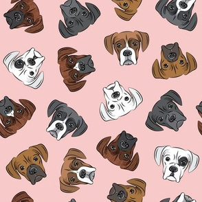 all the boxers - pink