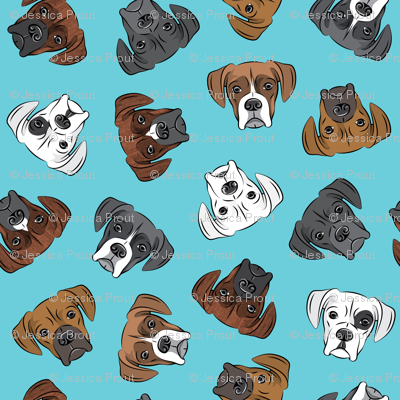 all the boxers - blue