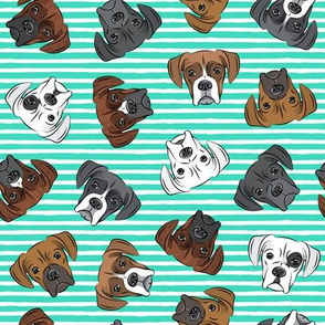 all the boxers - teal stripes