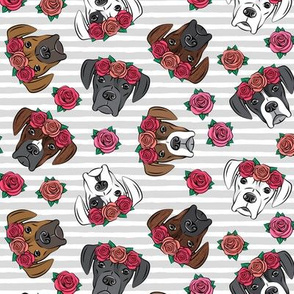 all the boxers with floral crowns - grey  stripes