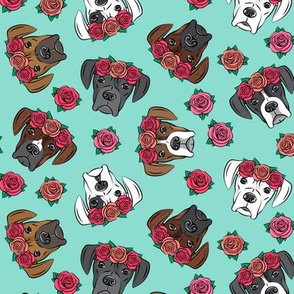 all the boxers with floral crowns - teal