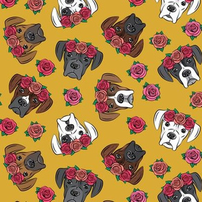 all the boxers with floral crowns - mustard