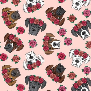 all the boxers with floral crowns - pink