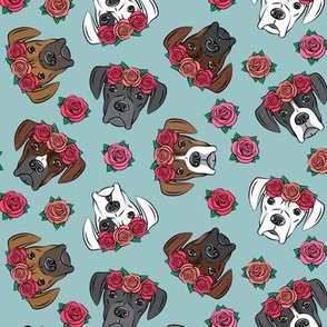 all the boxers with floral crowns - dusty blue