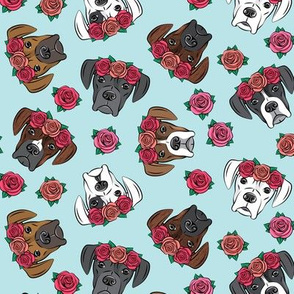 all the boxers with floral crowns - blue