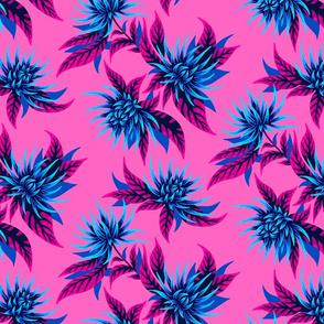 Chrysanthemums - Pink / Blue
