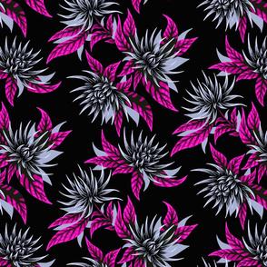 Chrysanthemums - Purple / Black