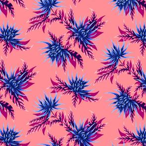 Chrysanthemums - Apricot / Navy