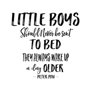 "56""x72"" Little Boys Quote"