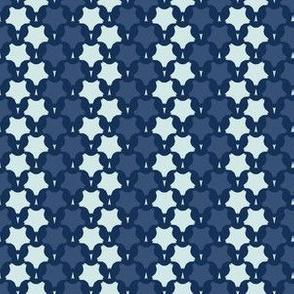 Bold Star Stripe Motif Japanese Style Hand Drawn Indigo Blue