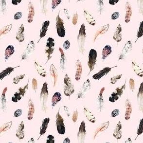 """4"""" Winter Boho Feathers Light Blush"""