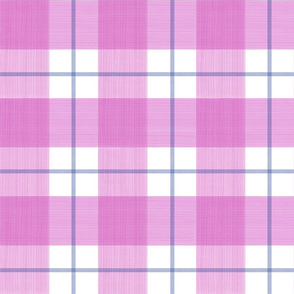Double Buffalo Plaid in Pink and Blue