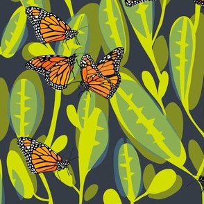 flutter_monarch_1