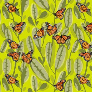flutter_monarch_4