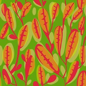 flutter_leaf_EXTRA1