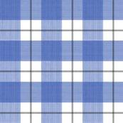 Rblack-blue-plaid-strie-merged-2_shop_thumb