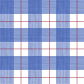 Double Buffalo Plaid in Blue and red