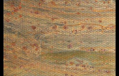 Rd-d-fabric-play-mats-03_shop_preview