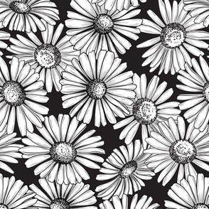 Black and White Daisy Pattern