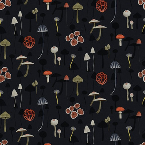 Dark Mystery Fungi