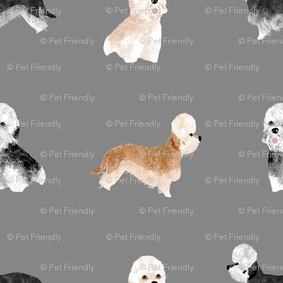 dandie dinmont terrier fabric - dandie dinmont dog fabric, cute dog fabric, dog  breed fabric, dog breed wallpaper, dandie dinmont gift wrap - grey