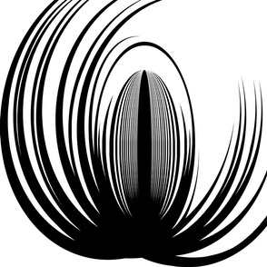 Larger black loteus2