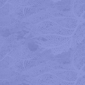 South Pacific Colors Pallet