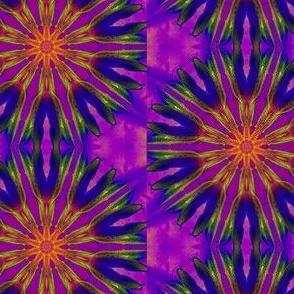 Delightful Daylilies