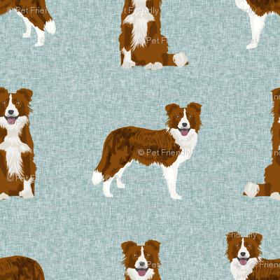 border collie fabric - dog fabric, dog breeds fabric, red border collie, dog breed fabric - blue