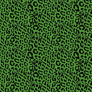 Tiny Leopard 509D30