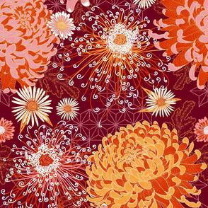 Japanese Chrysanthemums in Fall Burgu