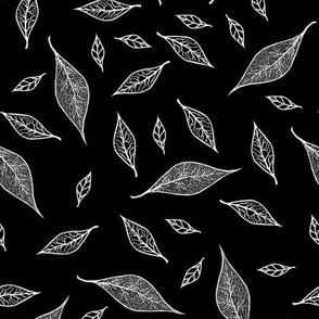 Skeleton Leaves Black