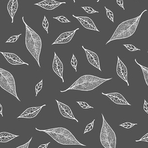 Skeleton Leaves Charcoal