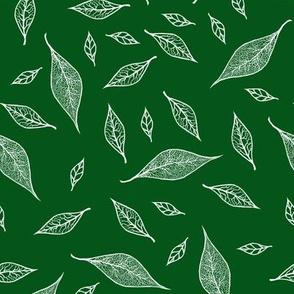 Skeleton Leaves Green