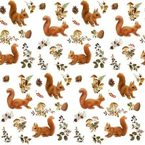 Red Squirrels on White, mini