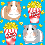 guinea-pigs-with-popcorn on blue