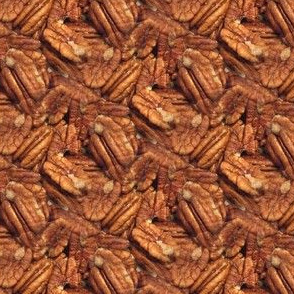 Georgia Pecans | Seamless Nut Photo Print