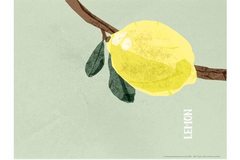 teatowel_lemon fabric by emmabryandesign on Spoonflower - custom fabric
