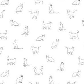 Tiny Cats Black and White