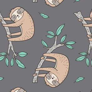 Sloth Sloths on Tree Branch with Leaves on Grey Rotated