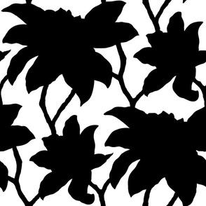 hip charlotte_18_black-white_21_M