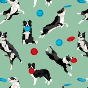 Border Collie Disc Dog fabric - disc dog, dog, dogs, agility dog, border collie fabric, black and white border collie dog, dog fabric by the yard - green