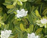 Magnoliarecoloured_thumb