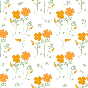 Floral Pattern-California Poppies- White