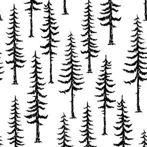 Pine Trees in Black on White
