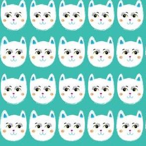 Coy White Cats