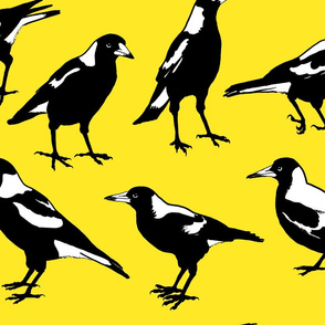 MAGPIE-large scale on yellow