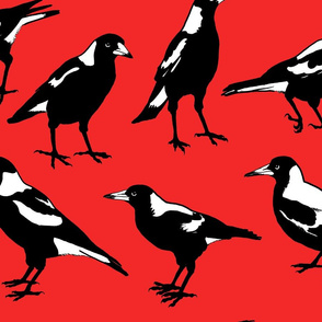 MAGPIES-large scale red