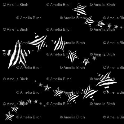 Zebra shooting stars