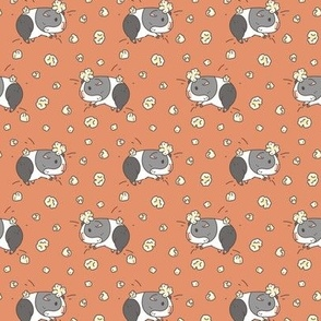Gray and white Guinea pig popcorning pattern